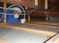 天井裏の清掃中