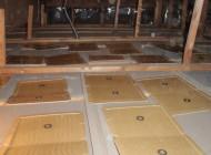 天井裏の巣を片付け捕獲用粘着板を敷く
