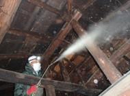 天井裏の消毒